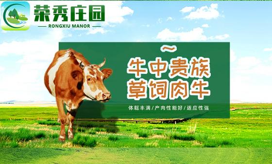 荣秀庄园:打造生态型的互联网农业养殖平台